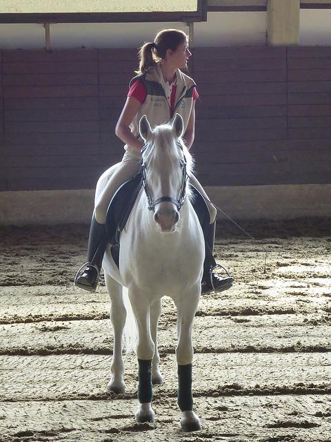 Polacy chętnie wysyłają dzieci do szkółek jeździeckich. Pomysł na lato!
