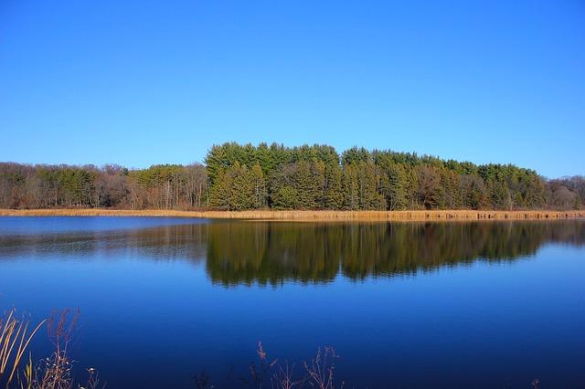 Zagradzanie linii brzegowej przy jeziorach jest nielegalne! Widzisz – reaguj!